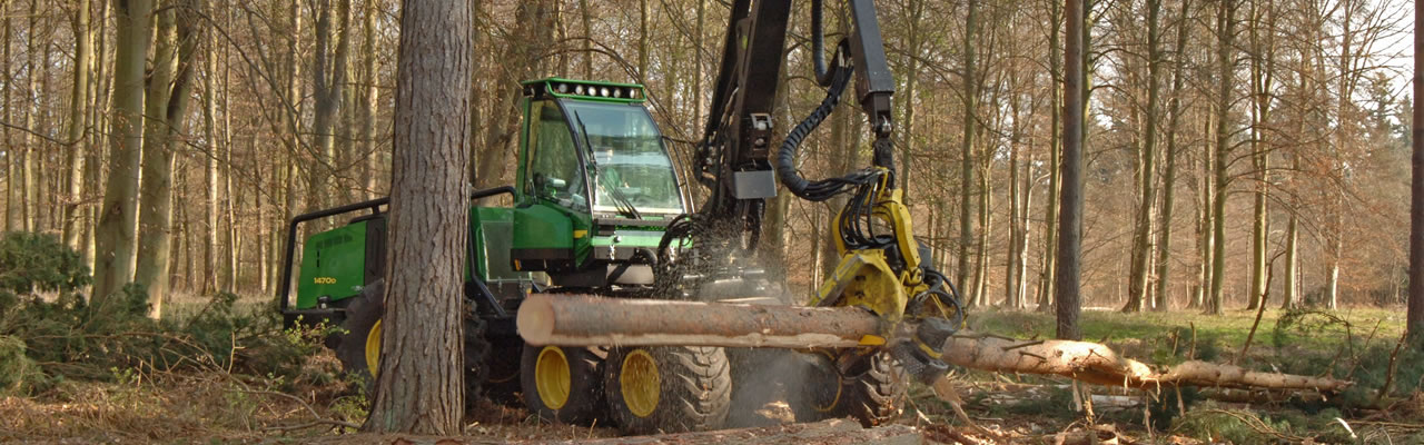 Machine cutting logs